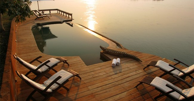 Zambezi Zest