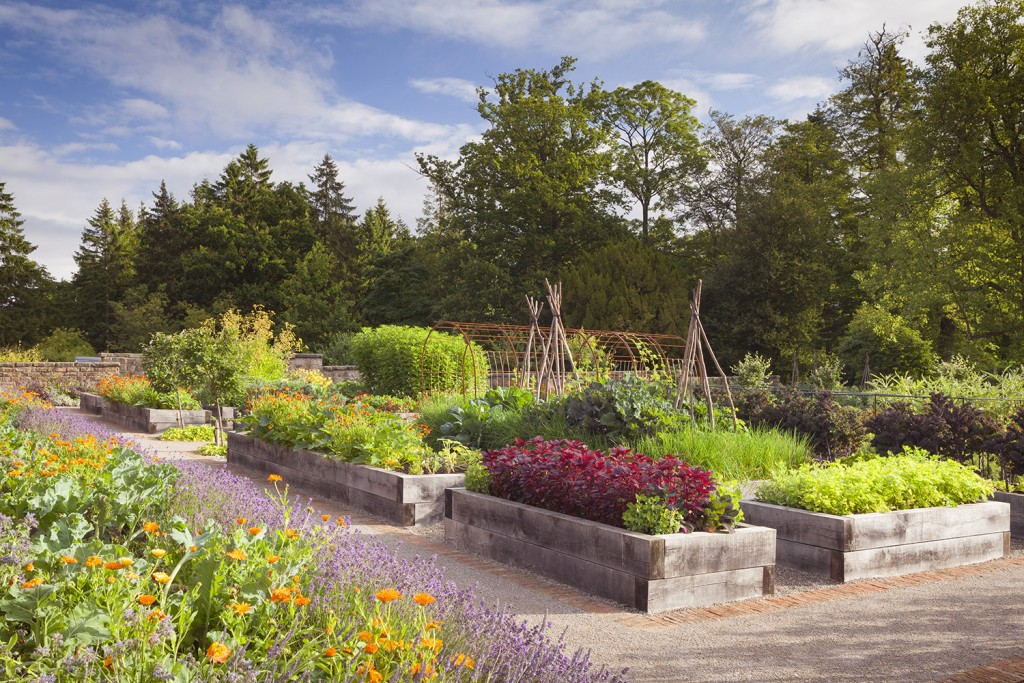 The Kitchen Garden at Rudding Park, North Yorkshire, UK.